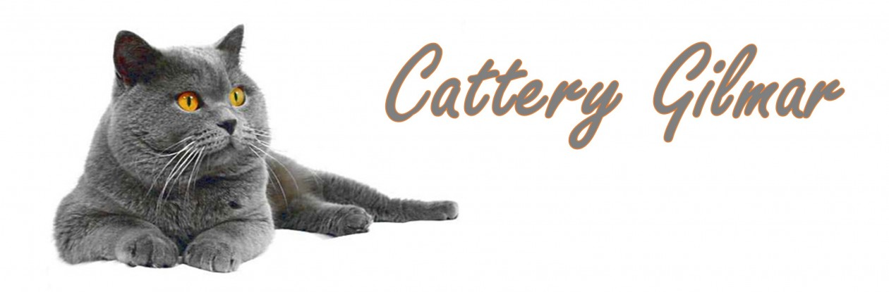 Cattery Gilmar